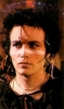 adam ant picture2