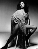 barbara parkins image