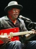 bo diddley picture