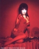 cassandra peterson picture2
