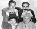 chico marx picture2