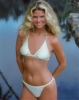 christie brinkley picture2
