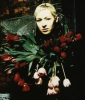 d arcy wretzky photo1