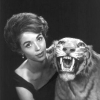 dana wynter photo1