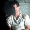 daniel gillies photo