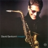david sanborn picture