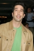 david schwimmer photo2