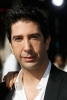 david schwimmer picture3