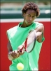 gael monfils photo