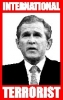 george w  bush picture4