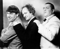 larry fine photo1