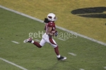 larry fitzgerald picture1