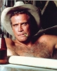 lee majors image2