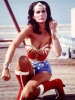 linda carter picture4