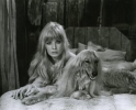 monica vitti picture3