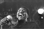 otis redding picture4