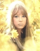 pattie boyd pic1