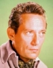peter finch picture1