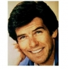 pierce brosnan picture2