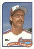 randy johnson picture1