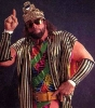 randy savage img