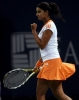 sania mirza picture1