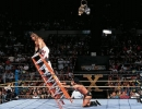 shawn michaels picture1