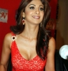 shilpa shetty picture