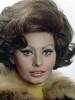 sophia loren photo2