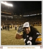 troy polamalu img
