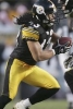 troy polamalu photo1