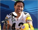 troy polamalu picture1